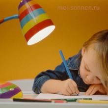 Можно ли обучать ребенка дома