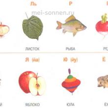 Как выполнить звуковой анализ слова?
