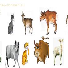 Конспект урока по развитию речи «Домашние животные»