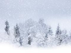 Снег лежит пушистый