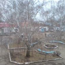 Ёлы-палы, снег не выпал!