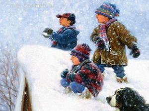 Зимнее веселье
