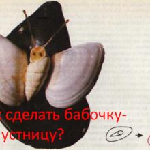 Как сделать бабочку-капустницу?