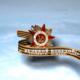 Ветераны Великой Отечественной войны и ваше к ним отношение