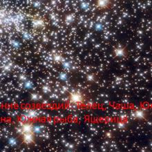 Влияние созвездий: Телец, Чаша, Южная корона, Южная рыба, Ящерица