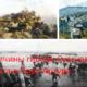 Причины гибели Русского флота в Порт-Артуре