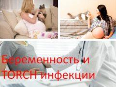 Беременность и TORCH инфекции