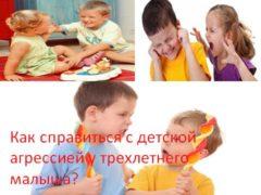 Как справиться с детской агрессией у трехлетнего малыша?