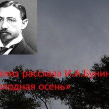 Анализ рассказа И.А.Бунина «Холодная осень».