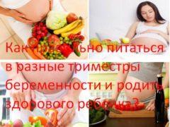 Как правильно питаться в разные триместры беременности и родить здорового ребенка?
