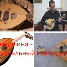 Мандолина — музыкальный инструмен