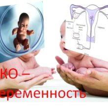 ЭКО – беременность — что это?
