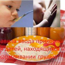 Правила ввода прикорма для детей, находящихся на вскармливании грудью