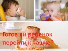 Готов ли ребенок перейти к чашке?