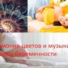 Гармония цветов и музыки в период беременности