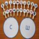 Конспект занятия «Познакомить с буквой и звуком «Дифференциация звуков [С-Ш] в слогах, словах и фразах»