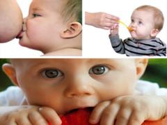 Когда и как  нужно отлучать ребенка от груди?
