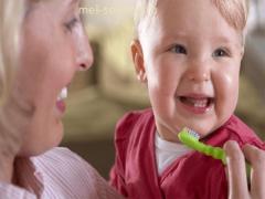 Как ухаживать за первыми зубками?