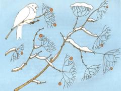 Конспект логопедического занятия «Птицы зимой»