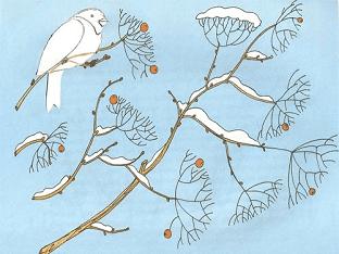 """Конспект логопедического занятия """"Птицы зимой"""""""