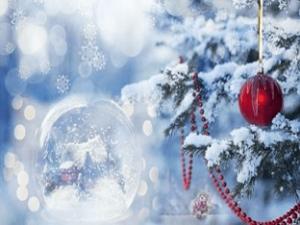 Стихи про новый год, зиму, елку, снег, деда мороза...