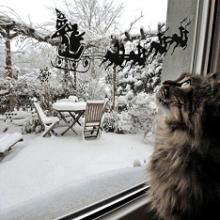 Картинки для новогодних вытынанок