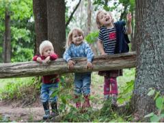 Лесная прогулка для детей старшего дошкольного возраста с ОВЗ.