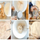 Соленое тесто для лепки поделок: хитрости и рецепты