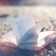Цитаты и афоризмы, фразы и высказывания о  книгах