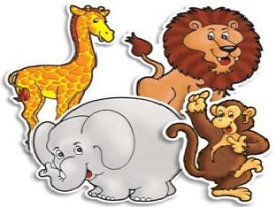 Загадки про животных для детей с ответами