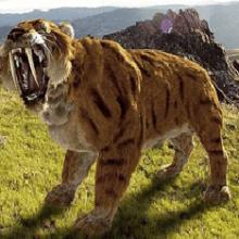 Кем были саблезубые тигры и почему они вымерли?
